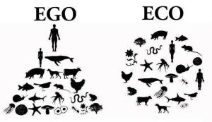 ego-vs-eco