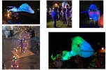 lichtparade