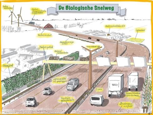 Biologische_Snelweg